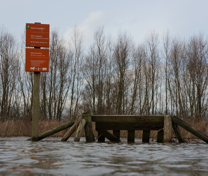Hoogwater in de Waal, Beuningen 2013