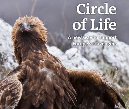 Brochure Circle of Life