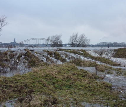 Hoogwater Stadswaard Nijmegen