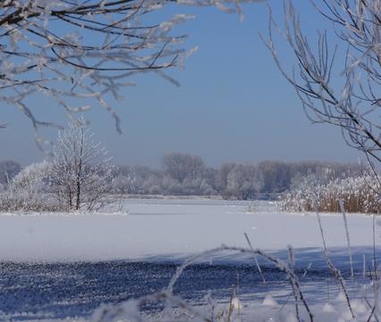 Millingerwaard sneeuw