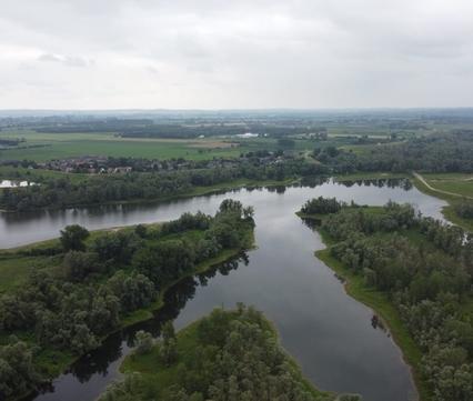 Zicht op de Millingerwaard bij Nijmegen. Foto: Niels Blankestijn