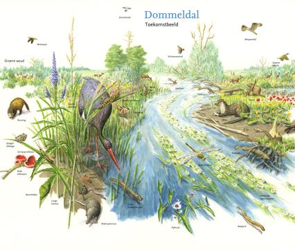 Toekomstbeeld Dommeldal