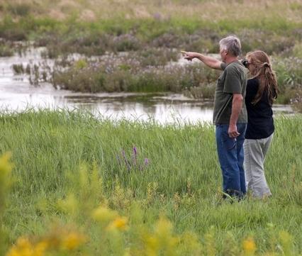 In de natuur bij het Haringvliet, foto: Natuurmonumenten