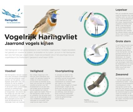 Vogelkalender Haringvliet
