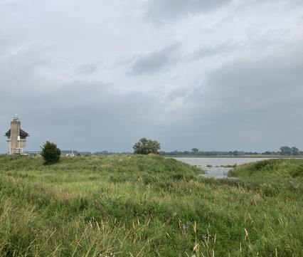 Grote delen van de Kleine Willemswaard in Tiel zullen overstromen. Foto: Emmie Nuijen, Rivier Actief