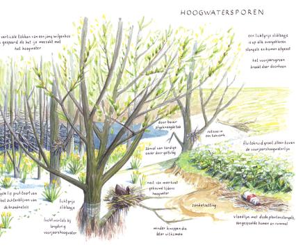 Zoekkaart Hoogwatersporen