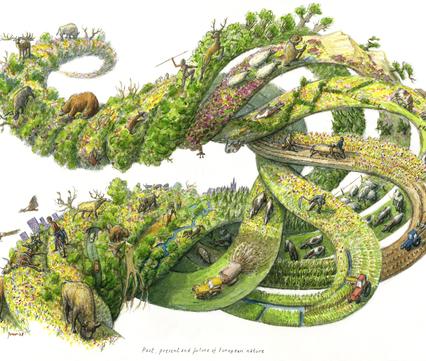 Past, present and future of European nature