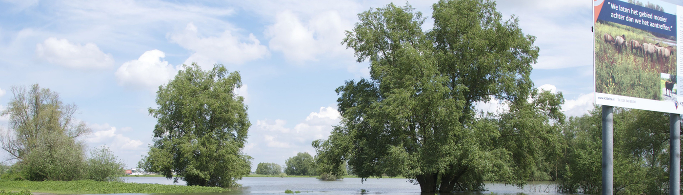 Hoogwater Leeuwense Waard