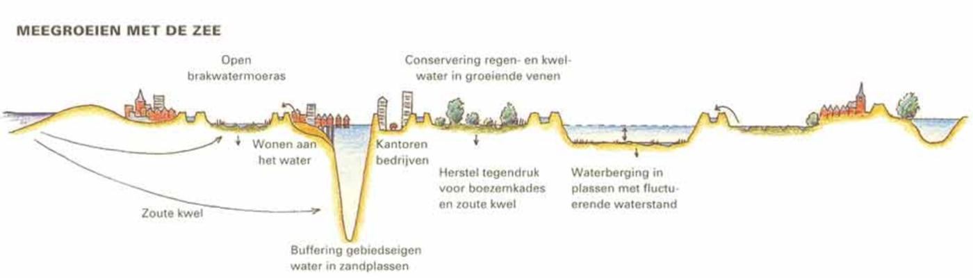 Meegroeien met de Zee Hollands veengebied 1996