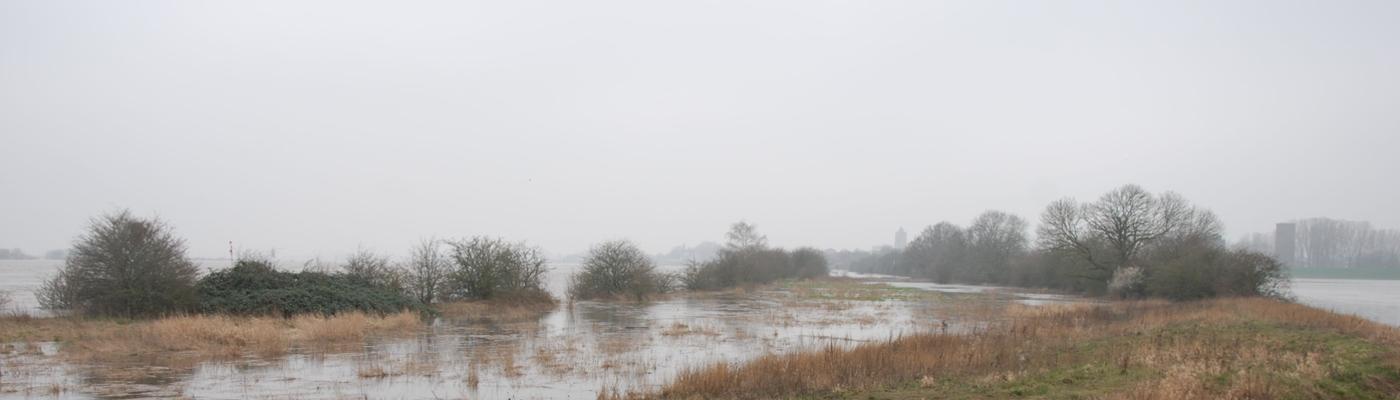 Hoogwater in Kleine Willemswaard