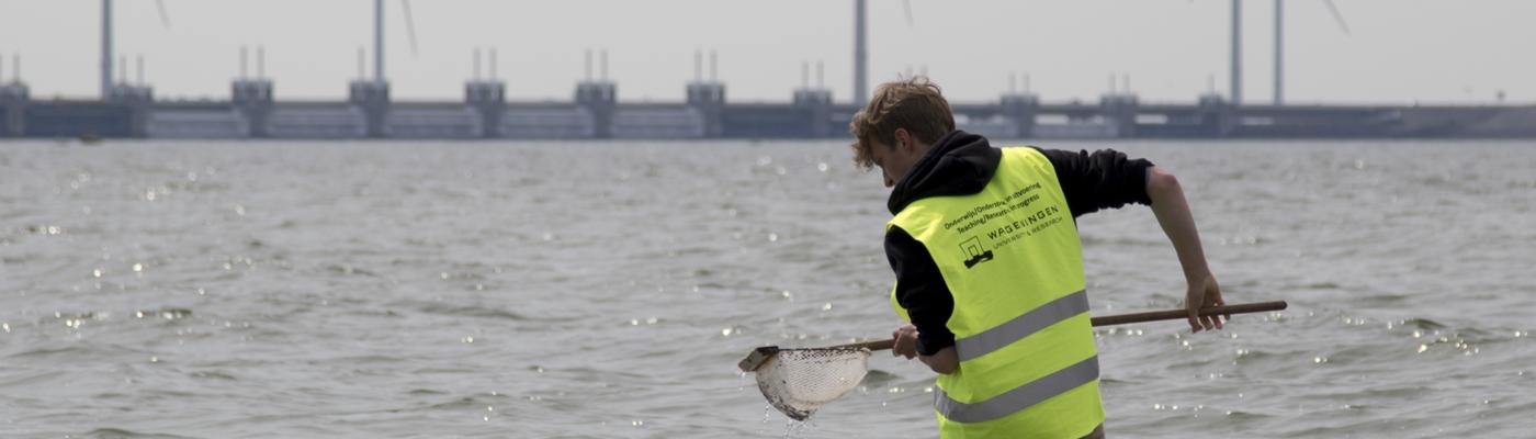 Studenten van de Wageningen Universiteit op pad langs de Oosterschelde en de Noordzee