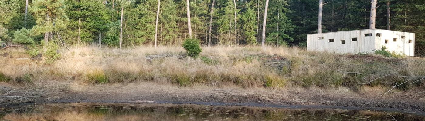 Wildkijkscherm in het Leenderbos bij Valkenswaard. Foto: Erik Schram/Staatsbosbeheer