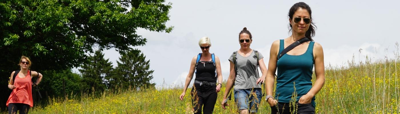 Wandelaars bij Wolfhaag