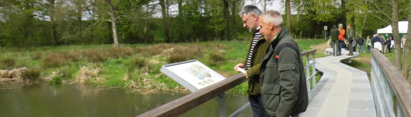 De brug over de Hemelbeek