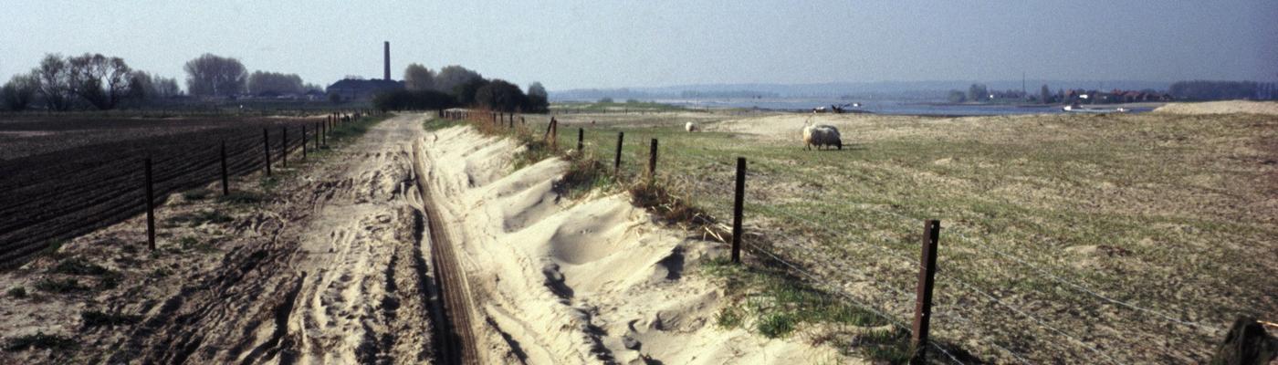 Millingerduin 1987