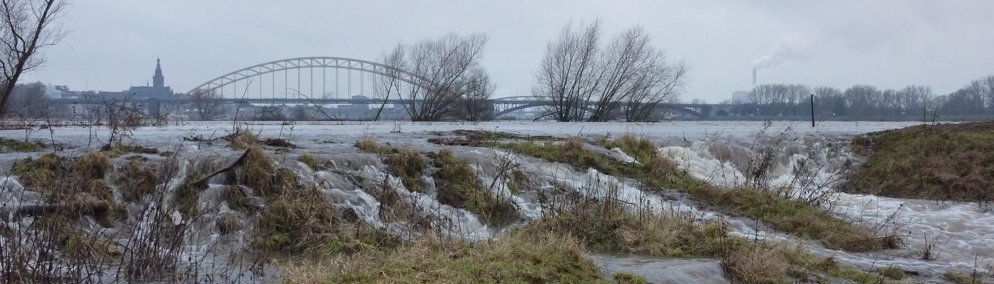 Hoogwater in de Nijmeegse stadswaard. Foto: Twan Teunissen