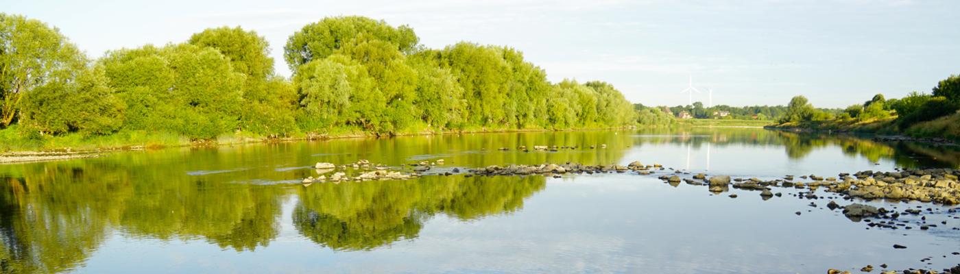 Grensmaas Borgharen