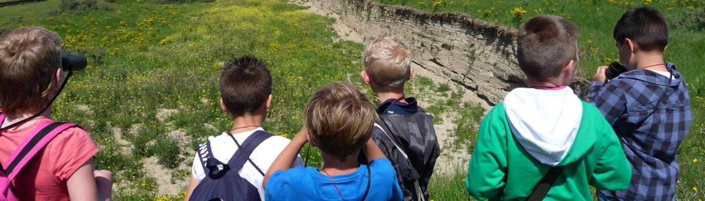 Jeugd bij de oeverzwaluwwand op de Landtong Rozenburg