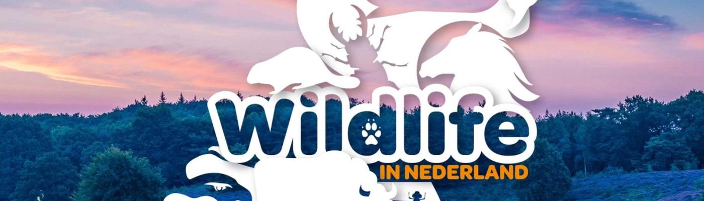 Wildlife in Nederland Collectie