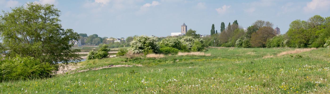 De Kleine Willemswaard (foto Rebecca Reurslag)
