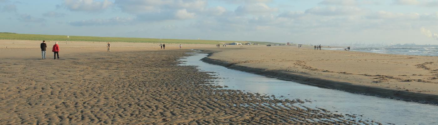 Zandmotor wadvlakte en zandbank