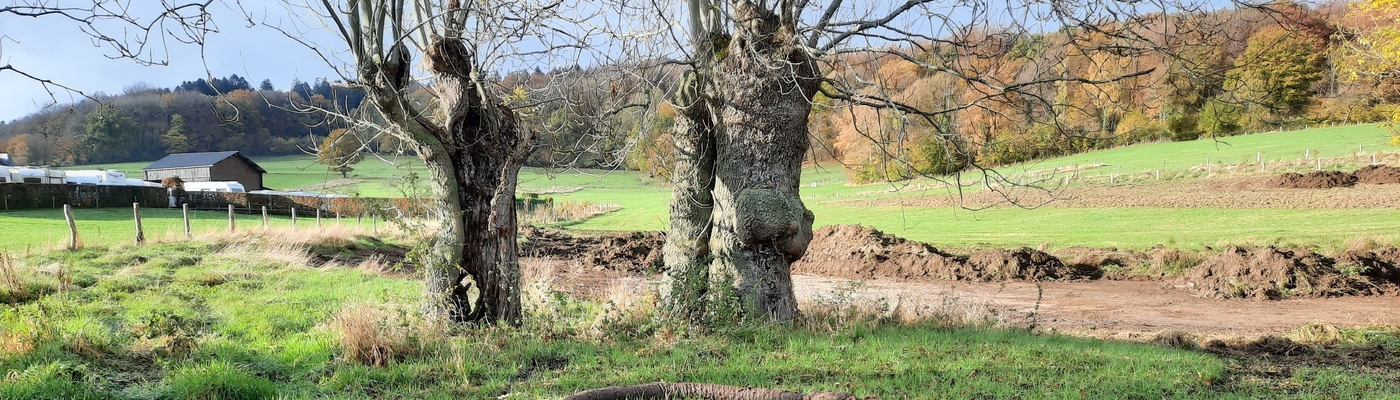 Drainagepijpen worden verwijderd