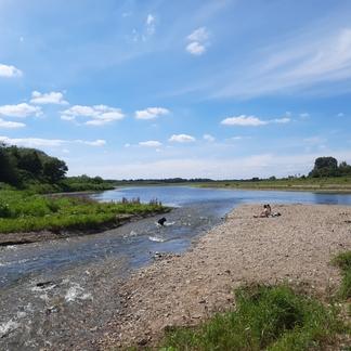 Genieten van de natuur in de Grensmaas (foto Hettie Meertens / ARK)