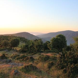Zonsopkomst in Bulgaarse Rhodopen