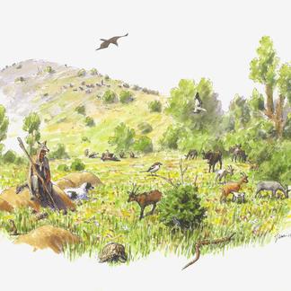 Herder in Bulgaarse Rhodopen
