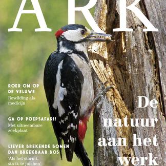 ARK Jaarmagazine 2020