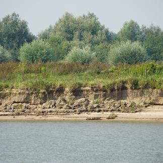 Waaloever Oosterhout
