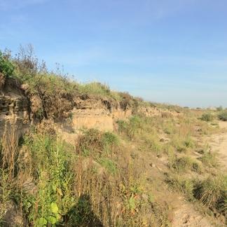 Brede zandstranden dankzij lage waterstanden op de Rijn