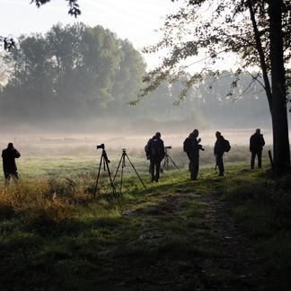 Bronstexcursie in Het Groene Woud. Foto: Fotoclub Focoss uit Oss