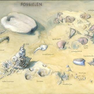 Zoekkaart Fossielen 't Rooth