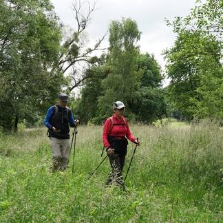 Geocachers in het Kempen~Broek