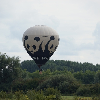 Wereld Natuur Fonds Ballon boven de Millingerwaard
