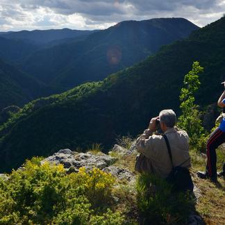 Rhodopen, Bulgarije, foto: Staffan Widstrand / Rewilding Europe
