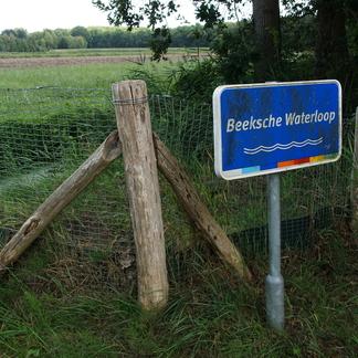 Blik op het perceel Hooge Beek (Foto Bert Vervoort)
