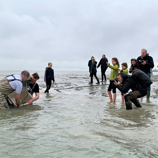 Ondanks het slechte weer konden de 18 stekelroggen op zaterdag 3 oktober succesvol worden uitgezet (Foto: Gijs van Zonneveld/ARK)
