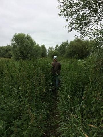 Op pad in het veld. Foto: Linde de Leeuw