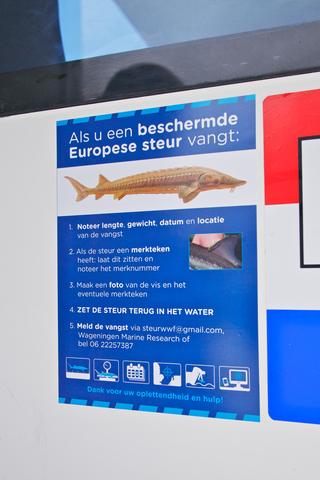 Handige steurensticker met stappenplan voor vangst steur