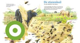 De stierenkuil en zijn sleutelrol in de natuur