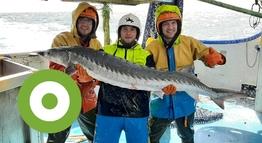 Bemanningsleden Lucas de Boer, Martijn Kater en Jacob Woord van de UK124: Luut Senior. Foto: Cornelis Romkes