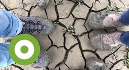 Een beetje struiner heeft modder aan zijn voeten