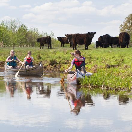 Kanoën Tungelroysebeek