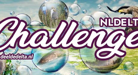 NLDelta Challenge