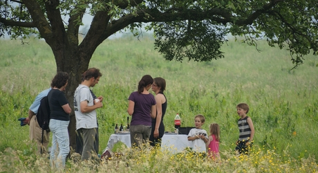 Picknick Wolfhaag