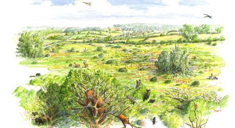 Landschap bij Vaals