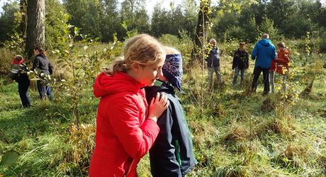 Veldles in natuurgebied De Geelders, onderdeel van Het Groene Woud