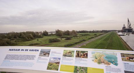 Uitkijktoren Landtong Rozenburg, foto Wim van Vliet